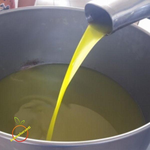 Olio EVO varietà biancolilla