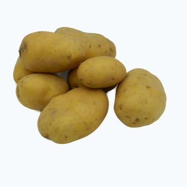 Patata desiree bio