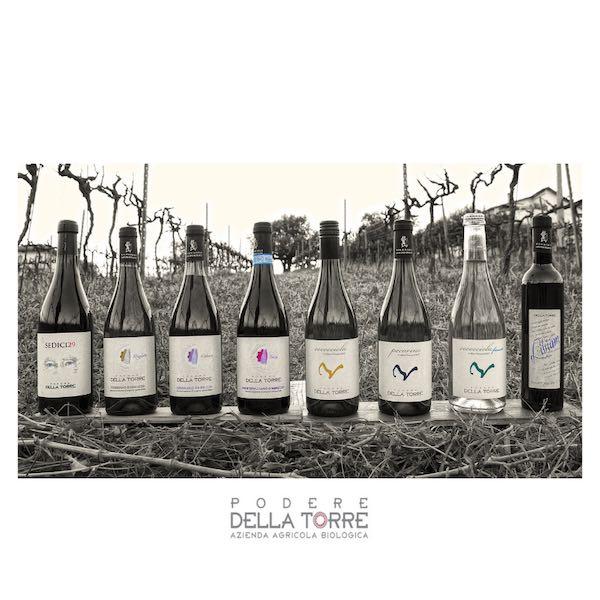 Box Vini Abruzzo