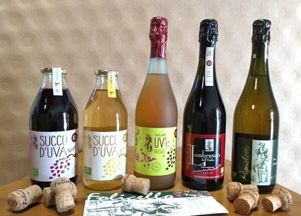 vini biologici emilia romagna