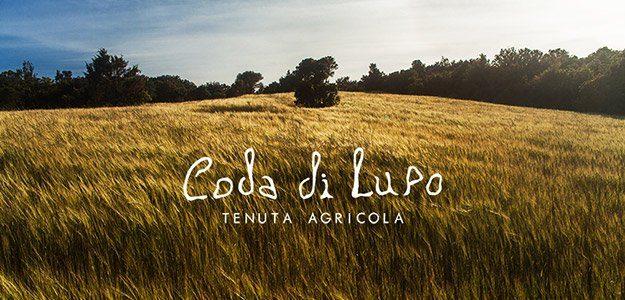 cropped azienda agricola codadilupo