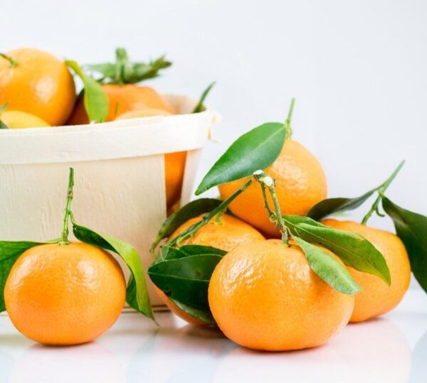1 Clementine 1 e1603203202785